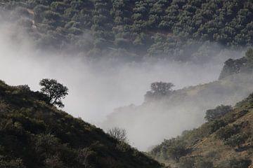 Wolken conversatie van jan katuin