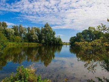 Ackerdijkse Plassen van Rinke Velds