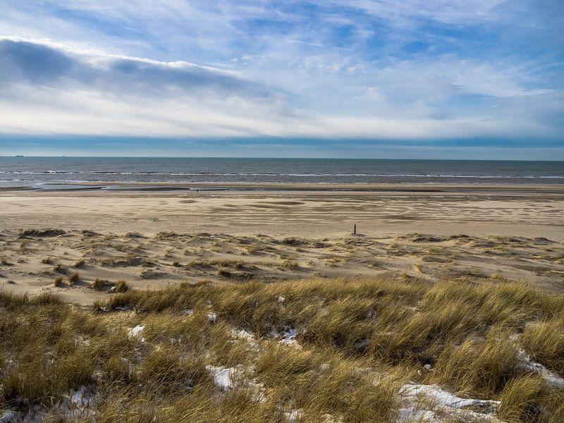 WAL - Wide Area Landscape von Martijn Tilroe
