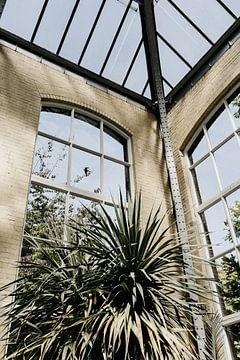 Hortus Botanicus Amsterdam, Botanischer Garten von Jolande Alicia