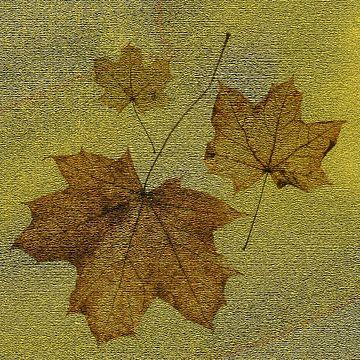 Goldener Schatz von Klaartje Majoor