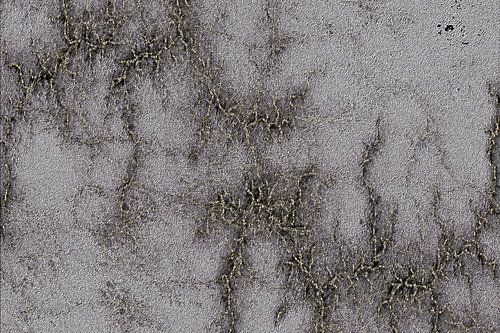 Grey Marble Relief Black And Silver Vined van