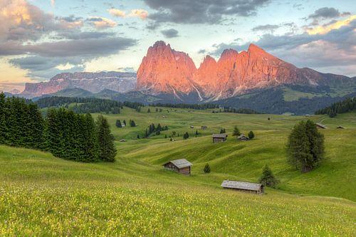 Alpenglow on the Alpe di Siusi #2 van Michael Valjak