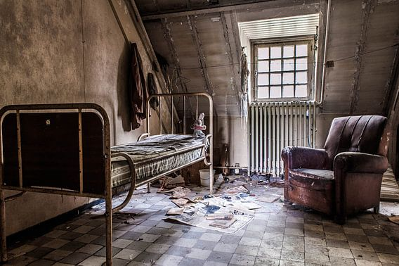 Lunatic Asylum - III van Anjolie Deguelle