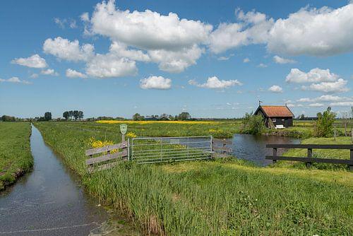 Wandelpad langs poldersloot bij Langerak