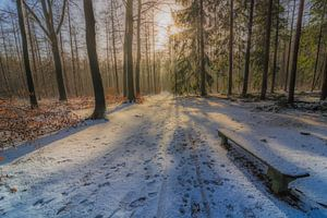 Apeldoorn in de sneeuw