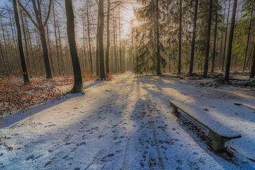 Apeldoorn in de sneeuw  van Ardi Mulder