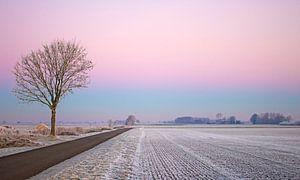 Winter landscape von Paula Darwinkel