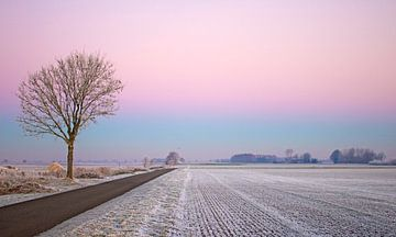 Winter Landschap  van Paula Darwinkel