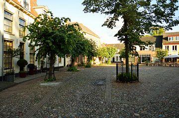 Grüne Tore in Harderwijk von Gerard de Zwaan