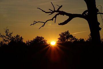 Zonsondergang van Laura van Grinsven