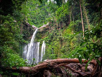 Indonesië - Lombok - Enorme waterval in de jungle