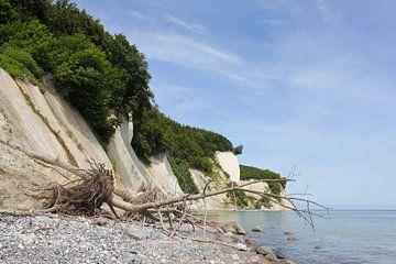 An der Kreideküste Rügens von Ostsee Bilder