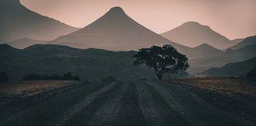 Silhouettes de Damaraland sur Joris Pannemans - Loris Photography