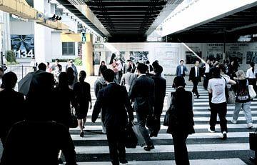 'Zebrapad', Tokyo- Japan von Martine Joanne
