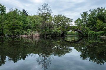 Central Park | New York City von Laura Maessen