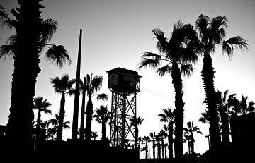 palmbomen met kabelbaan in Barcelona van Bert Bouwmeester