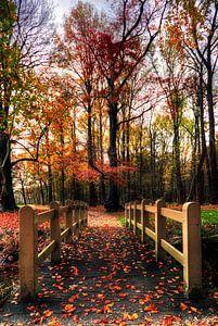 Herfst landgoed Groeneveld Baarn van Watze D. de Haan