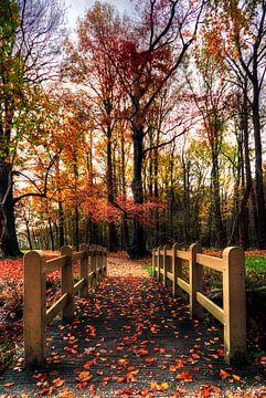 Herbstgut Groeneveld Baarn von Watze D. de Haan