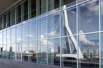 Spiegelung der Erasmus-Brücke von Susan Chapel