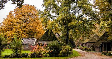 Herbst in Drenthe Herbst in den Niederlanden von daan meeusen