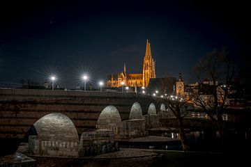Regensburg 's avonds met kathedraal en Donau bij nacht van Thilo Wagner