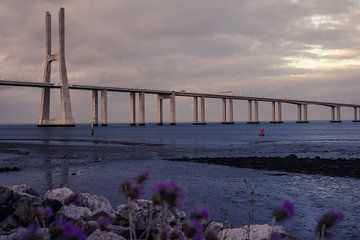 Vasco da Gama brug, Lisboa, Portugal van