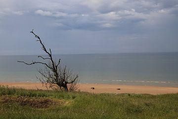 Omaha Strand Normandie von matthijs iseger