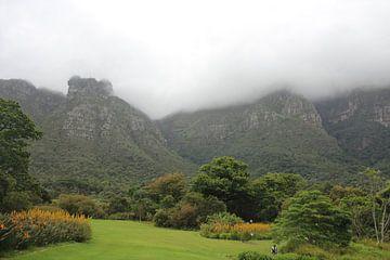Berge im Nebel von Quinta Dijk