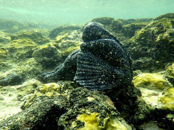 ballerina  in koraal onderwaterwereld