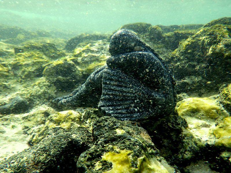ballerina  in koraal onderwaterwereld  van Tineke Bos
