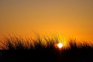 Sunset with dunes