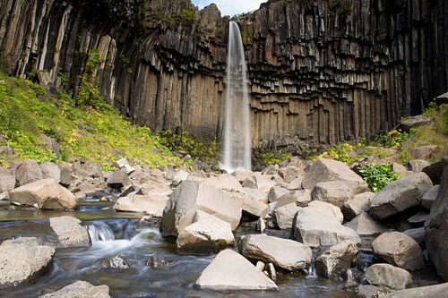 Svartifoss waterval IJsland