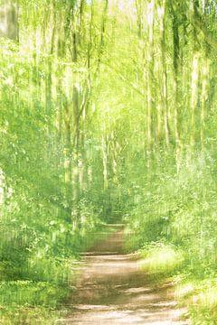 Sprookjes bos van Erna Böhre