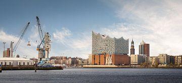 Panoramam von der Elbphilharmonie in Hamburg von Jonas Weinitschke