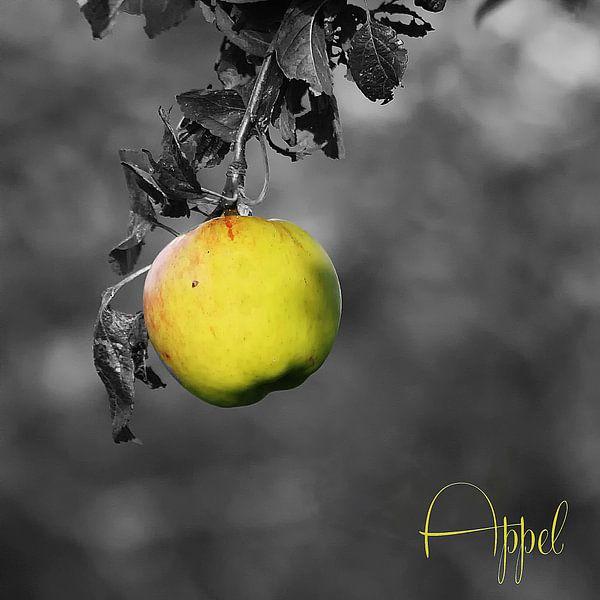 Appel-A
