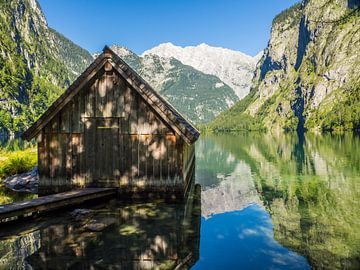 Alpenweide aan de Königssee in het Berchtesgadener Land van Animaflora PicsStock