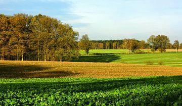 Herbstidylle - bunte Bäume und herbstliche Felder von