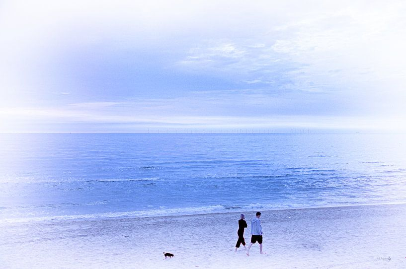 Strandwandeling van Erik Reijnders
