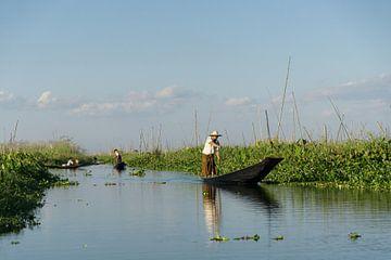 Boeren bij drijvende tuinen op het Inlemeer, Myanmar van Annemarie Arensen