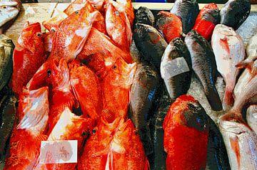 Fische von Madeira von Leopold Brix