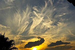 Sunset Dance in Midrand sur Christiane Behrmann