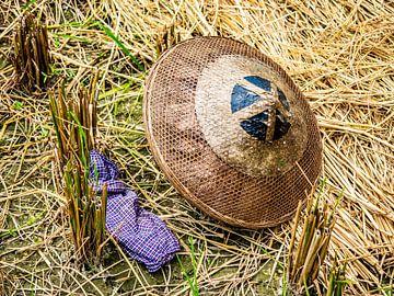 Hoed in een rijstveld von Stijn Cleynhens