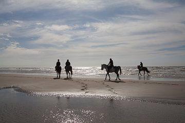 Paarden tijdens schemering op Wassenaarse slag von Monique Hassink