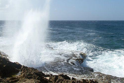Curacao, ruige kust no. 8