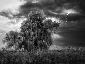 De goddelijke kracht van de hemel van Vladyslav Durniev