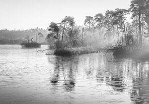 landschap in zwart wit van