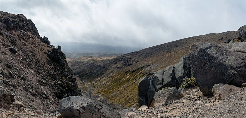 Mount Ruapehu van Ton de Koning