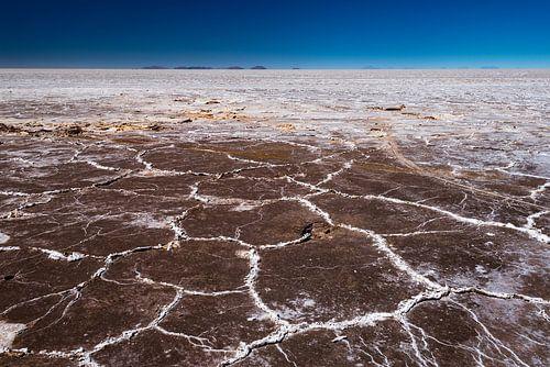 Salar de Uyuni van Ronne Vinkx