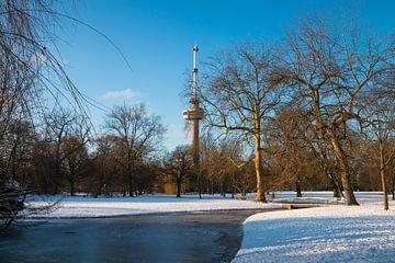 Der Euromast - Winter 5 von Nuance Beeld